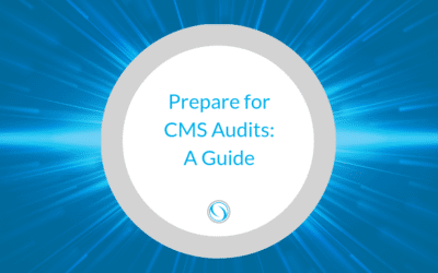 Prepare for CMS Audits: A Guide